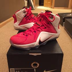 Nike lebron xii 12 heart of a ...