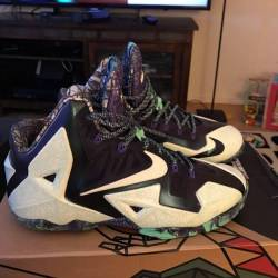 Lebron 11 gator kings
