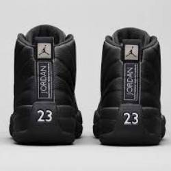 Air jordan 12 retro the master