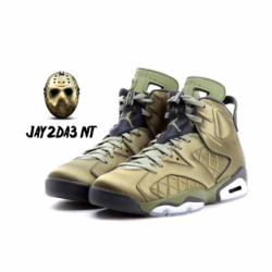 Air jordan vi pinnacle flight ...