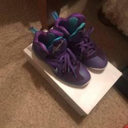 Nike lebron s