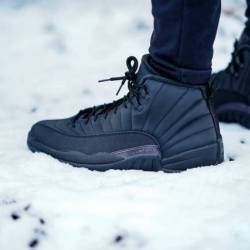 Air jordan 12 retro winter