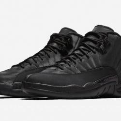 Air jordan 12 winterized black...