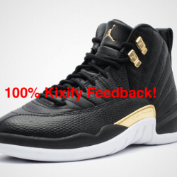 Air jordan 12 wmns black reptile