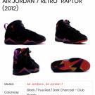 Air Jordan 7 Raptors